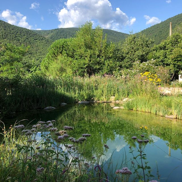 🌙 Retreat news! We have one room available for the retreat in 2 weeks: 14-17 September. Get in touch if you (and a friend!) are in need of three days of body and soul nourishment: Delicious food, swimming in clear mountain water, yoga overlooking the valley, all in a magical setting: Le Moulin, an 18th century water mill. £200 all in. Direct flights from Stansted to Perpignan.