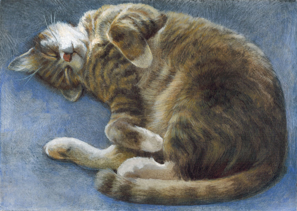 Ali pretending to Sleep - Carolyn Brooks