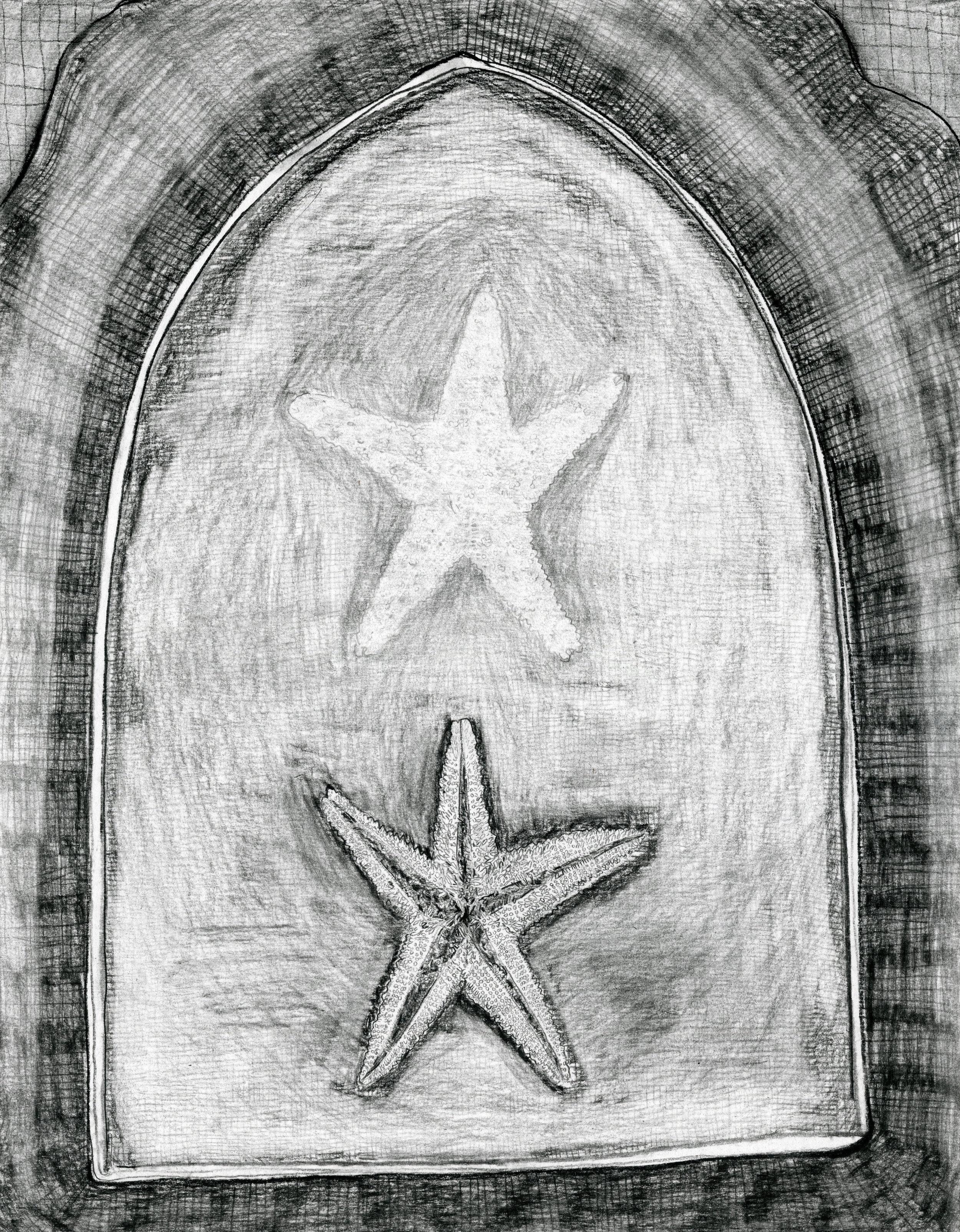 Starfish Magic