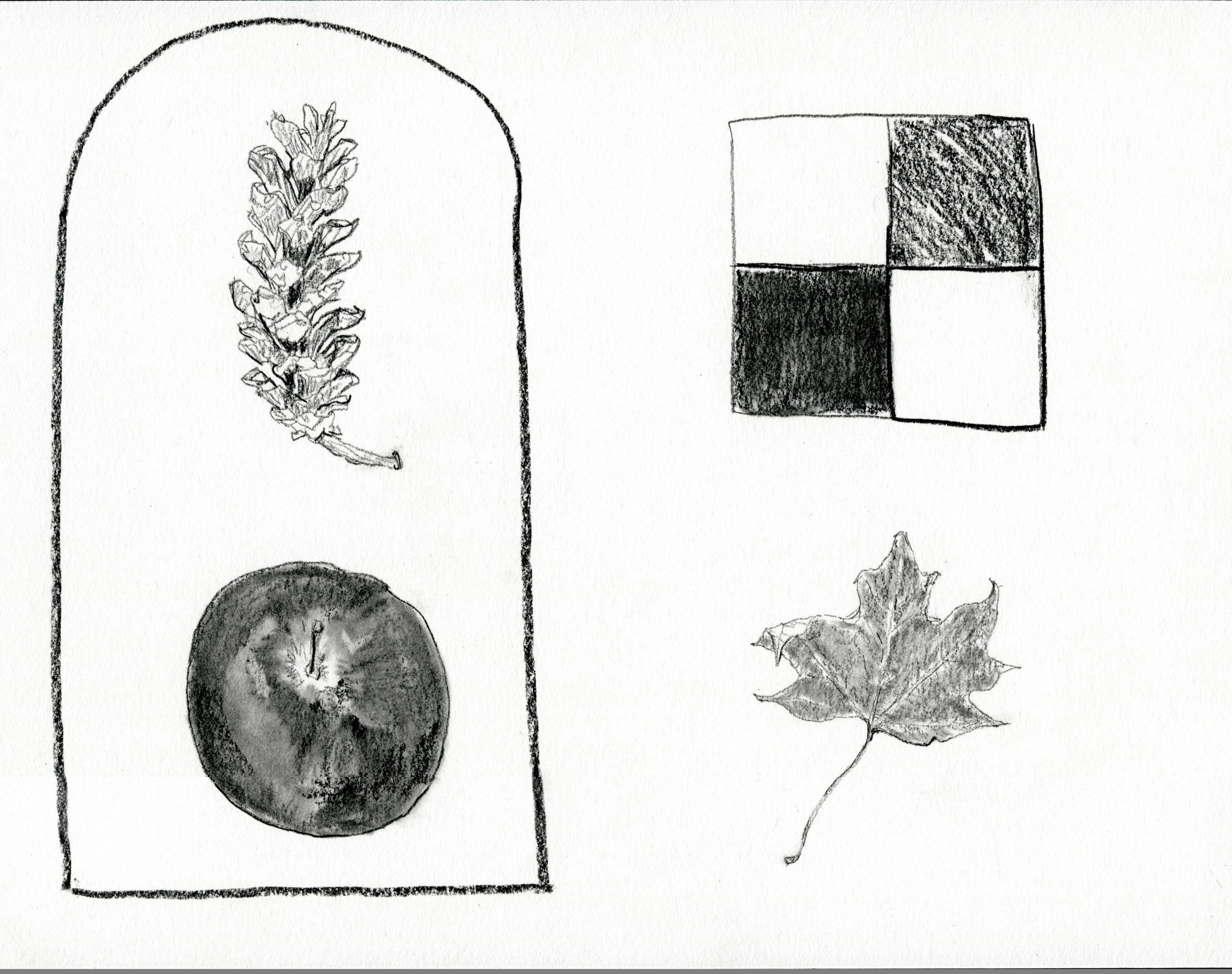 Things from Trees