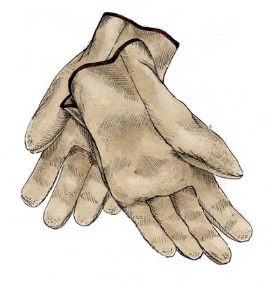 TK-Gloves.jpg