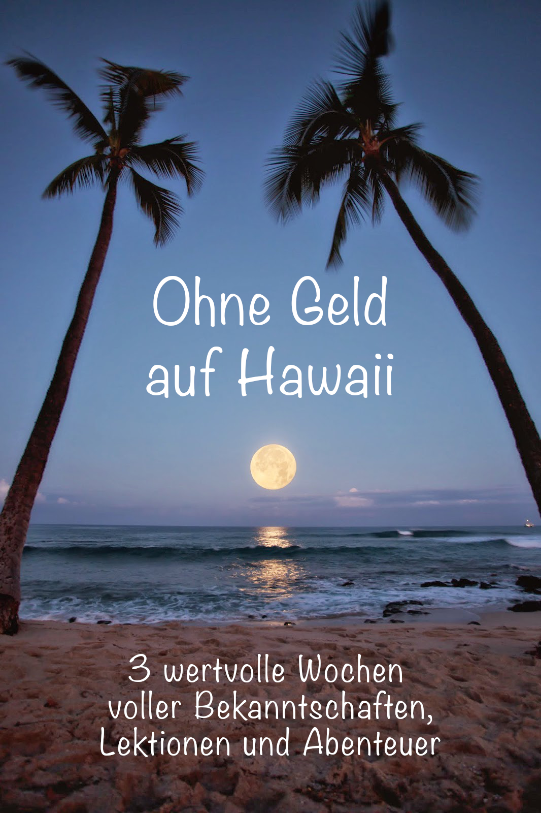 buch cover.png