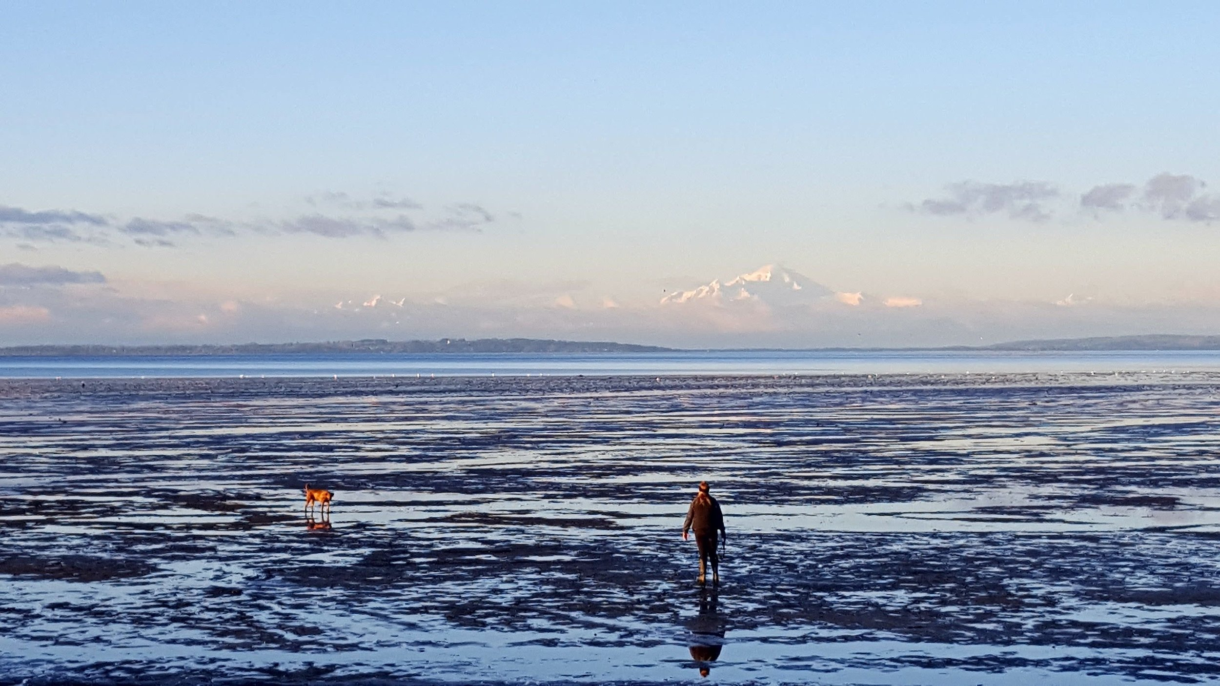 Photo of Boundary Bay in my hometown.