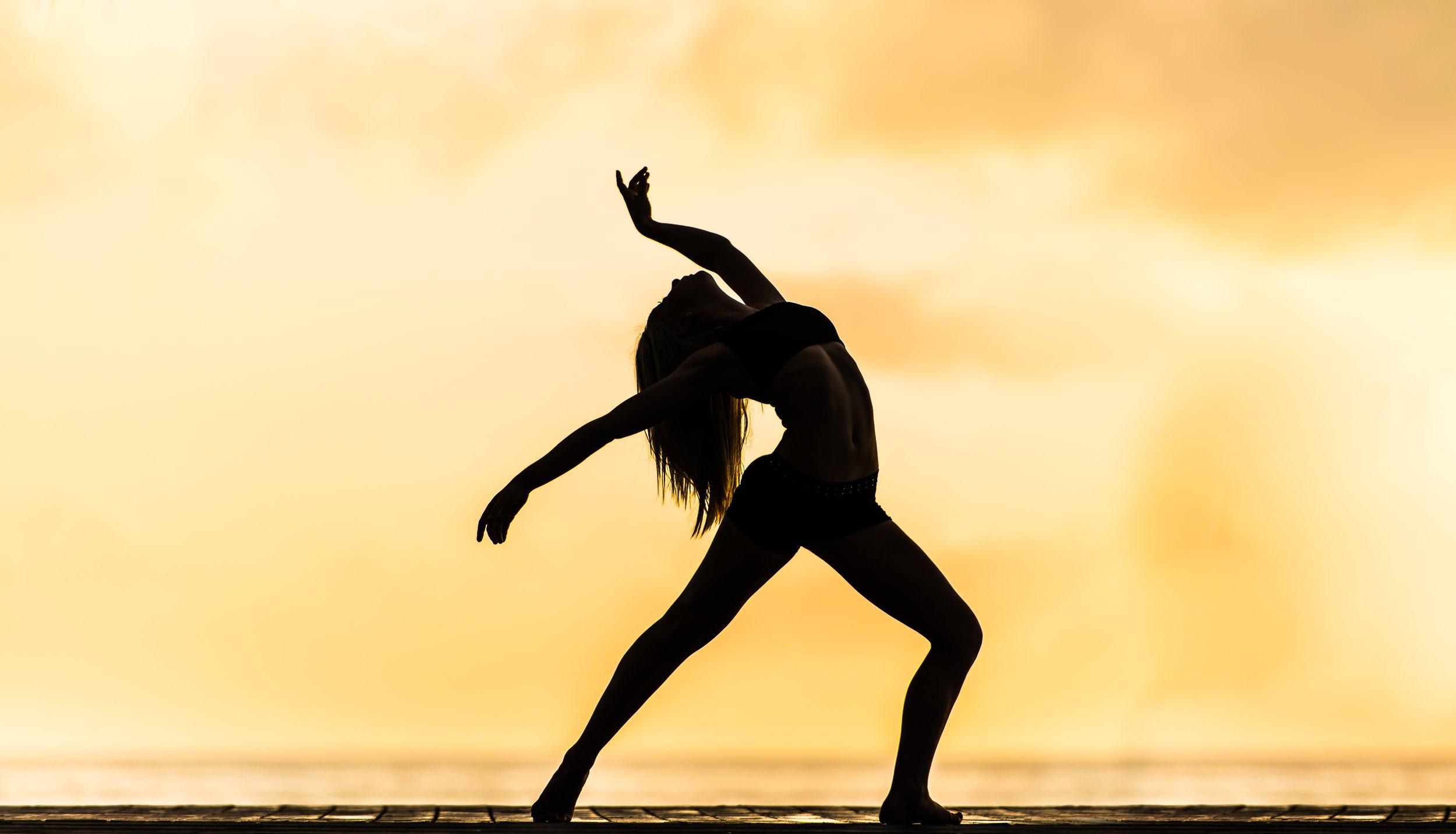 Yoga Trance Dance™ - ist geeignet für Yogalehrer und Alle, die diese zeitlose Form der Bewegung, Ekstase und Meditation lieben und lernen möchten.Die Immersion kann auch als persönliche Weiterentwicklung oder aus purer Freude oder Interesse an Bewegung, Tanz und Meditation besucht werden.Die Immersion vermittelt alle Basis-Werkzeuge für ein tieferes Verständnis und Integration der verschiedenen Aspekte einer Yoga Trance Dance Stunde.