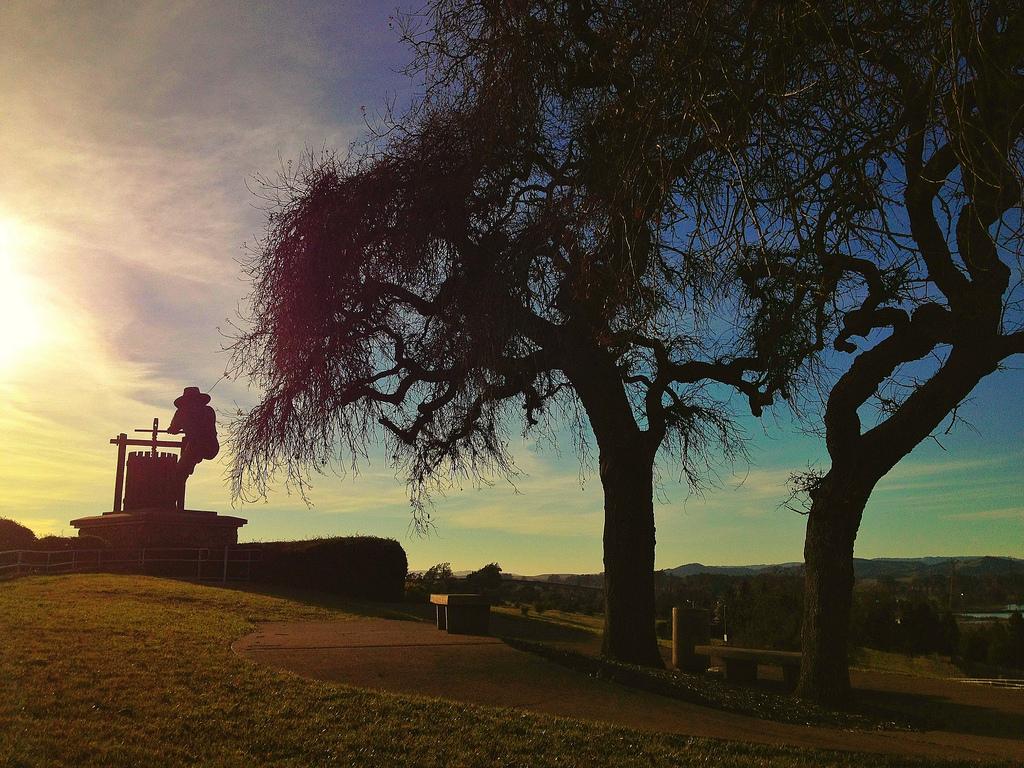winecountry-sunset.jpg
