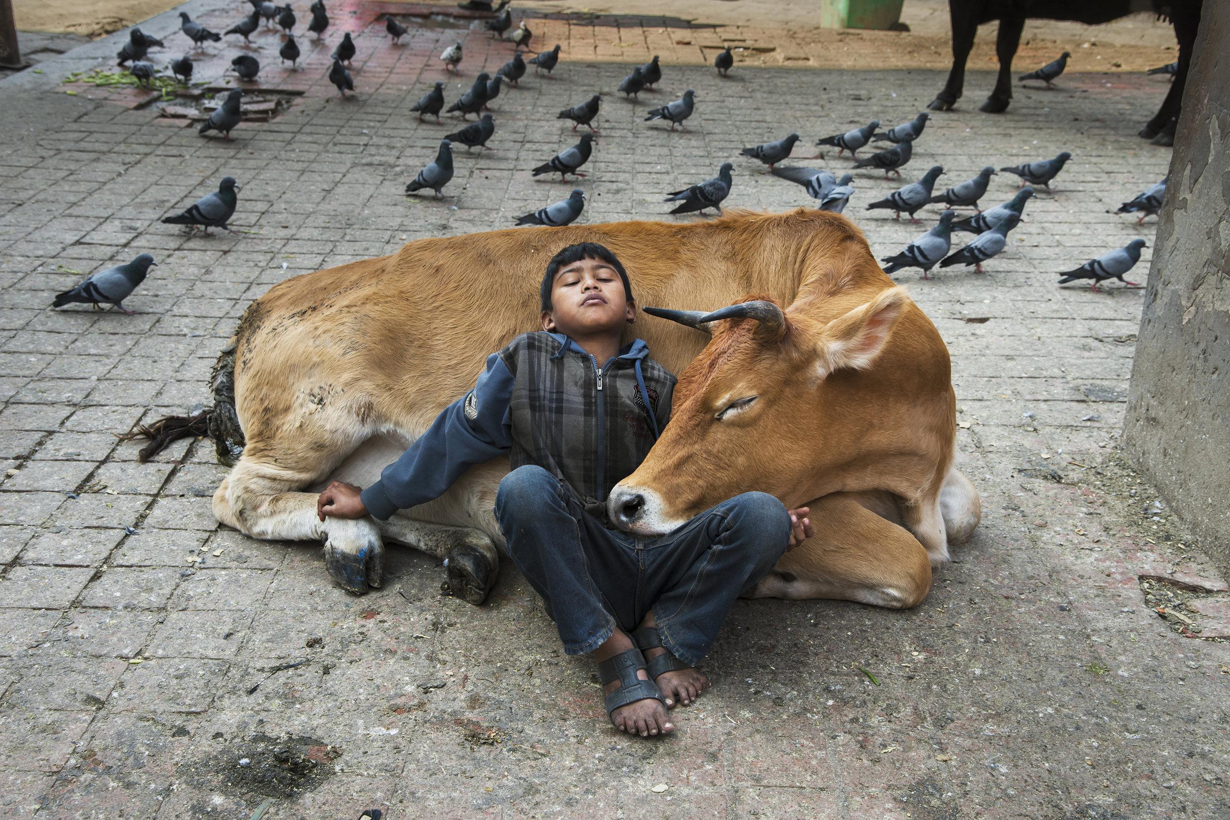 Steve McCurry, Kathmandu, Nepal, 2013 - - Copyright Steve McCurry ©