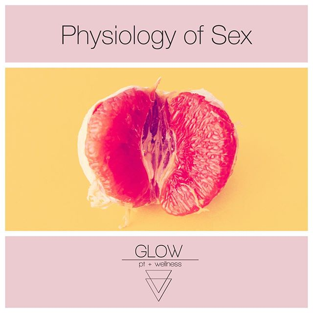 ⭐️This week is Sexual Health Awareness Week!⭐️ - 🤓And guess what? In my research for writing posts for this week, the biggest theme was that there isn't a lot of research/data about women's sexual function. Shocking, right.🙄🙄 - 😎I'll tell you what we do know, though, because I believe that knowledge is power, and when we aren't being taught enough about our bodies, that power is being taken away from us - 🌸Today's topic is: the physiology of sex in females/what is happening in our bodies during sex - The female sexual response cycle is: 🌼Desire - a mental state that says we want to partake in sexual activity 🌺Arousal - physiological changes happen, like increased blood flow to the genitals causing engorgement of the clitoris and labia, increasing lubrication, and lengthening of the vagina (isn't that so cool?!) 🌸Orgasm - rhythmic contractions of the pelvic floor muscles and smooth muscles of the uterus and vagina 🌹Resolution - It has been shown that up to 76% of women have some kind of sexual dysfunction, which can include problems from any part of the sexual response cycle. 🙅🏽♀️This is no good because female sexual dysfunction is tied to negative relationship experiences and lower quality of life scores - 📚 Learn about your body ladies! It is wonderful and complicated and certainly worth knowing more about. I bet you didn't know that your vagina got longer!! - I got my information for today's post from an article called Biology of Female Sexual Function from the Boston University School of Sexual Medicine (https://www.bumc.bu.edu/sexualmedicine/physicianinformation/biology-of-female-sexual-function/) It's old, but like I said, there's not a lot of info about this out there. - Have questions? Ask them here! Wanna work with me? Let me know! Make an appt with me at the Berlin Wellness Group on Tuesdays and Thursdays or I also make house calls 👏🏽👏🏽 Email me at anna@glowptandwellness.com ————————————— #youglowgirl #womenshealth #sexualhealthawarenessweek #sexualhealth #