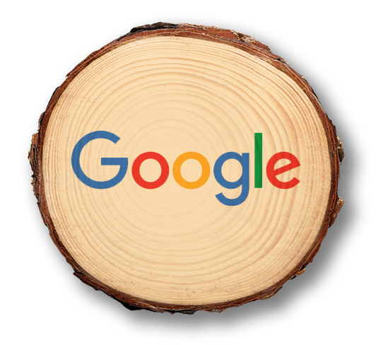 google pine.png