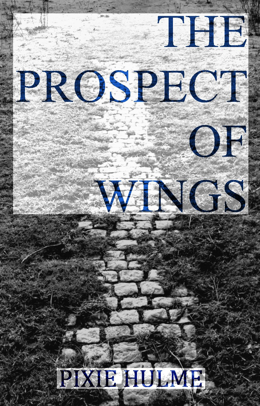 - The Prospect of Wings2015Self-published in 2015. With a foreword by actor Anthony Head