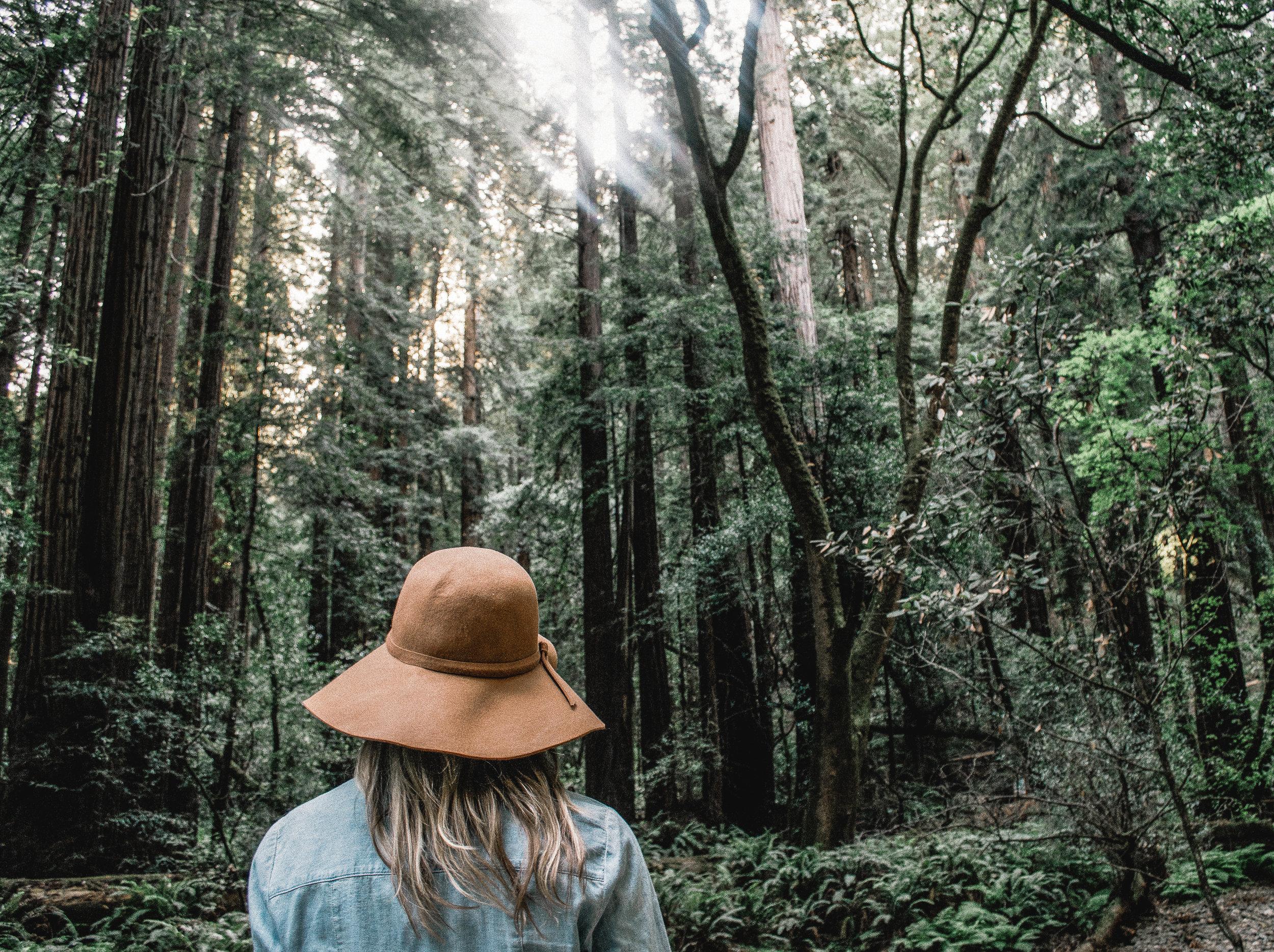- Concientizarnos sobre la naturaleza: relación e impactos.