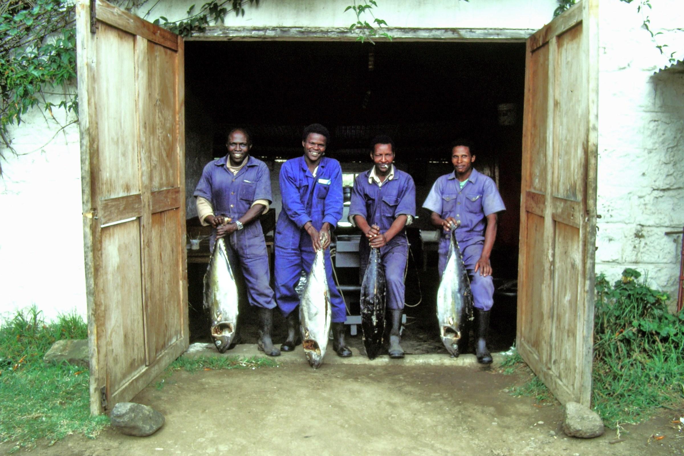 Kenya.. at the first smokehouse.