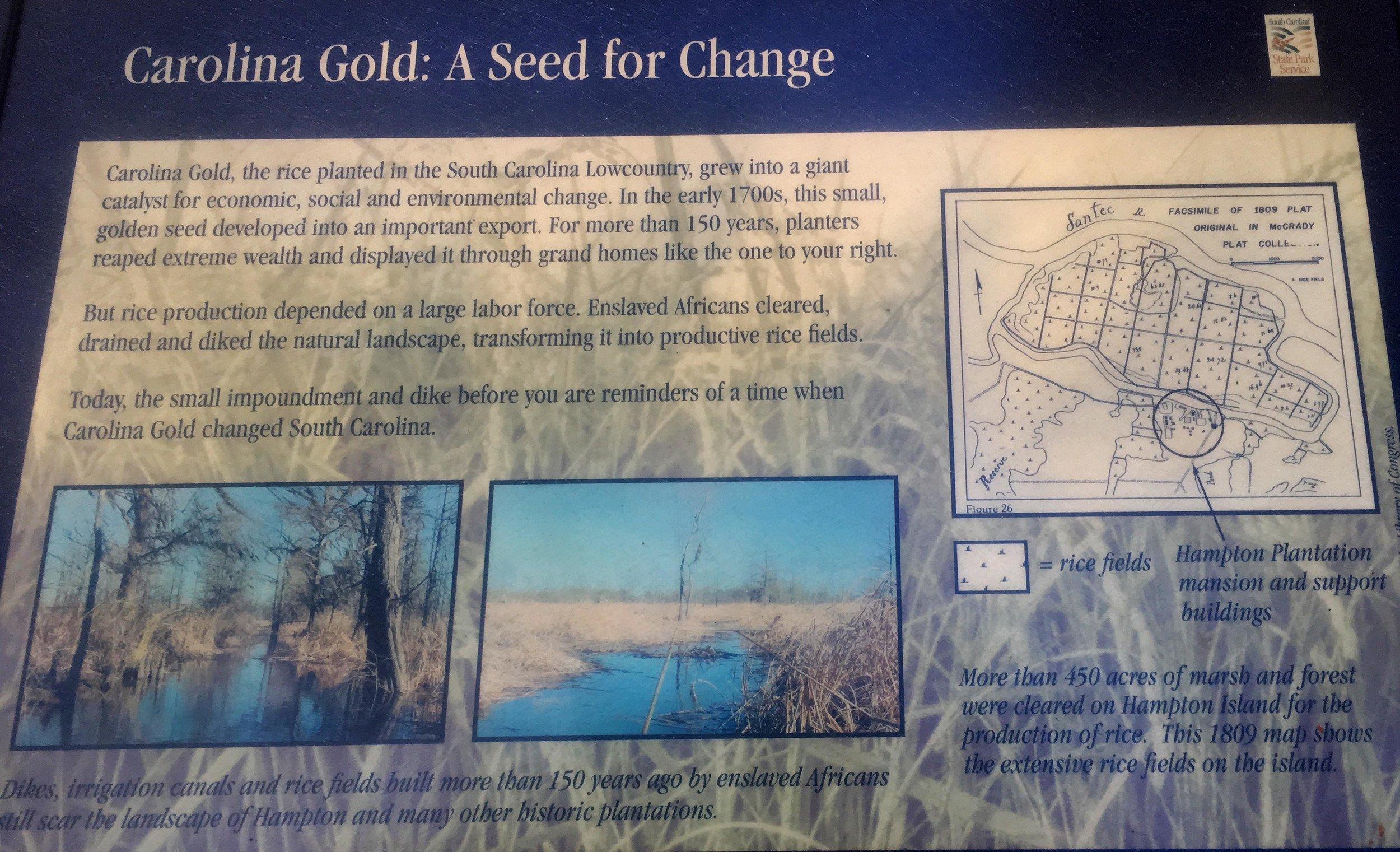 Carolina Gold Information Board