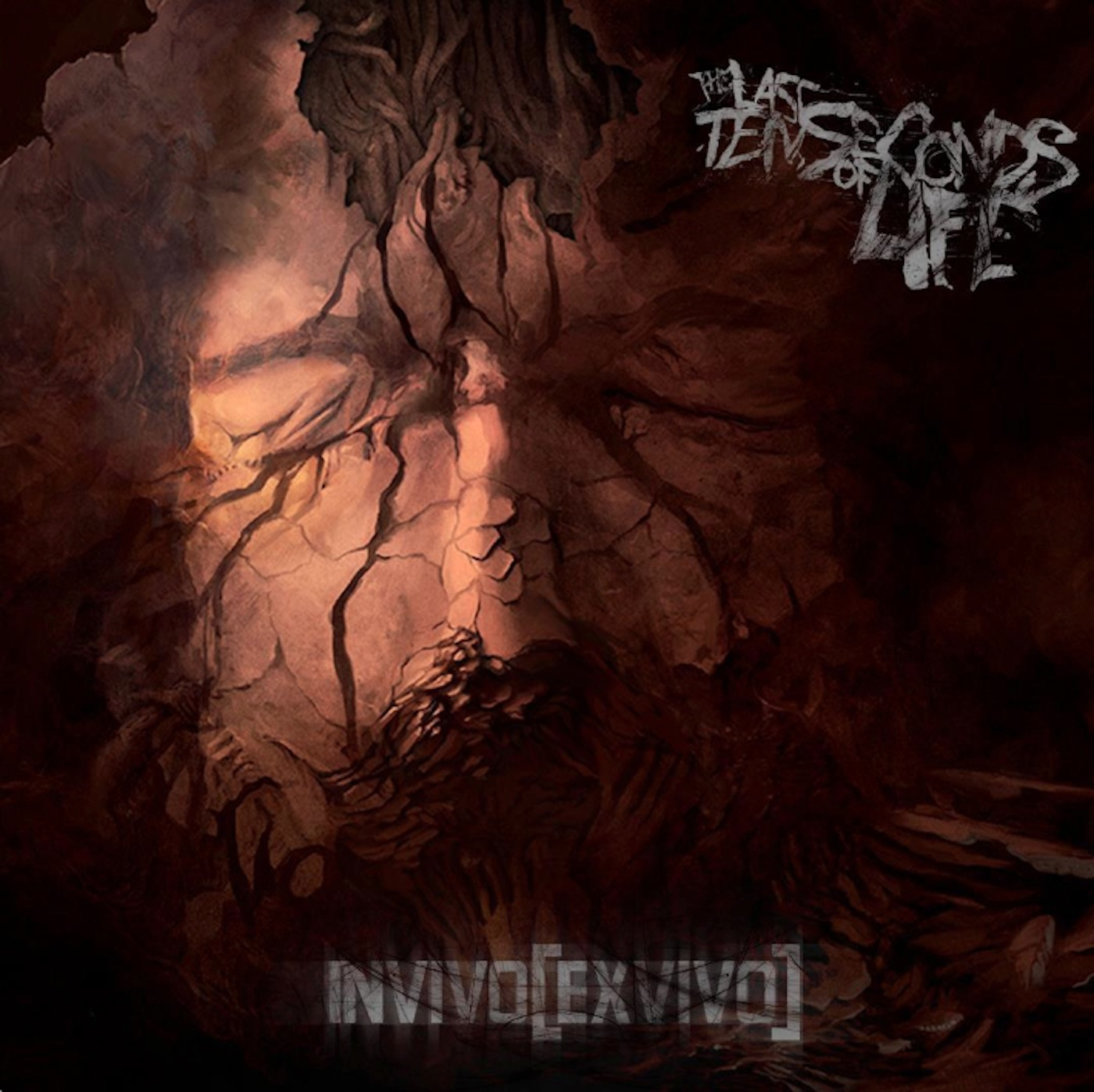 INVIVO[EXVIVO] - 2013