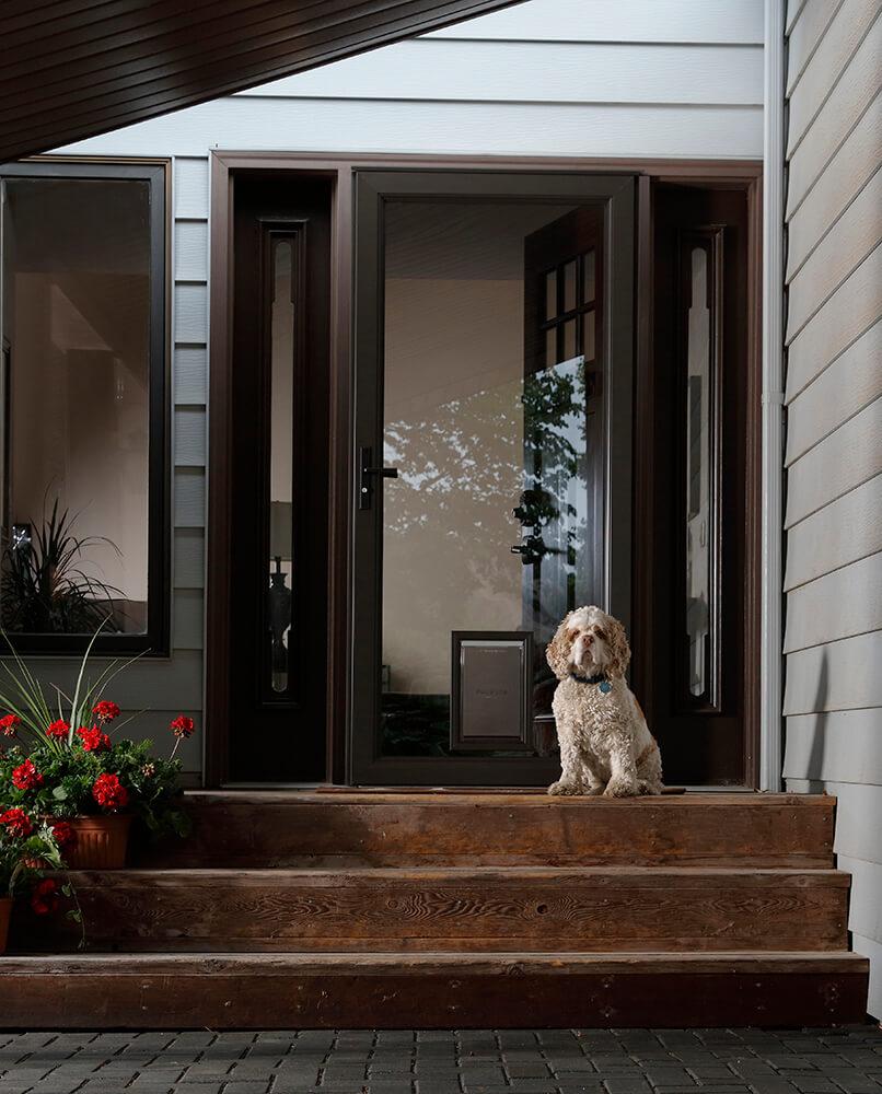 Larson Storm Doors 5.jpg