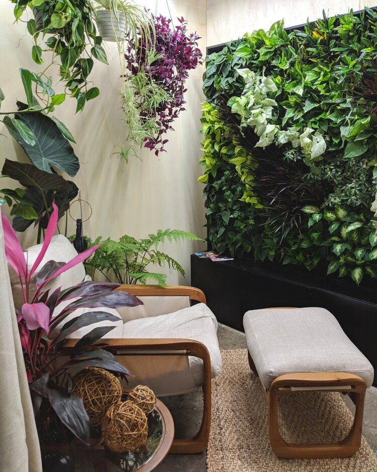Biophilic design throughout. 200 plants in the live green wall + 4 large floor plants + 3 hanging plants + Bose noise canceling headset pre-loaded with nature soundtracks + 1 Pitu chaise lounge chair and ottoman by Sossego + Sisal rug + Grapevine balls