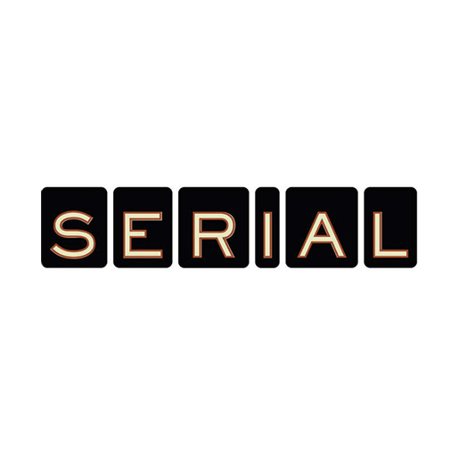 Serial Podcast - I've really been enjoying listening to podcasts recently. My favorite of the year was Serial Season 1. It's a nonfiction story about a murder trial from the 90s; it's very interesting & innovative because you hear the story from many perspectives.