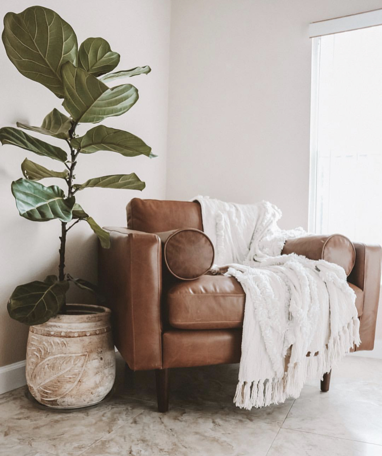 This fiddle leaf fig tree is amazing & I am on the hunt to find one for my living room!