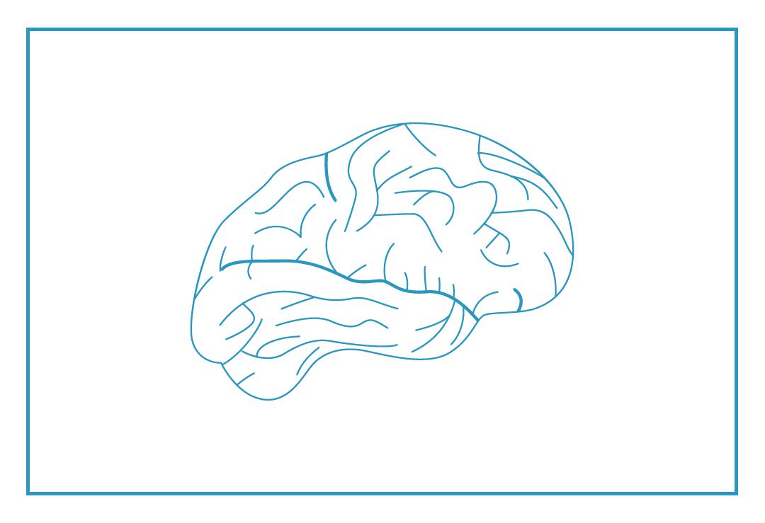 33,430 - Iowans suffer a traumatic brain injury every year