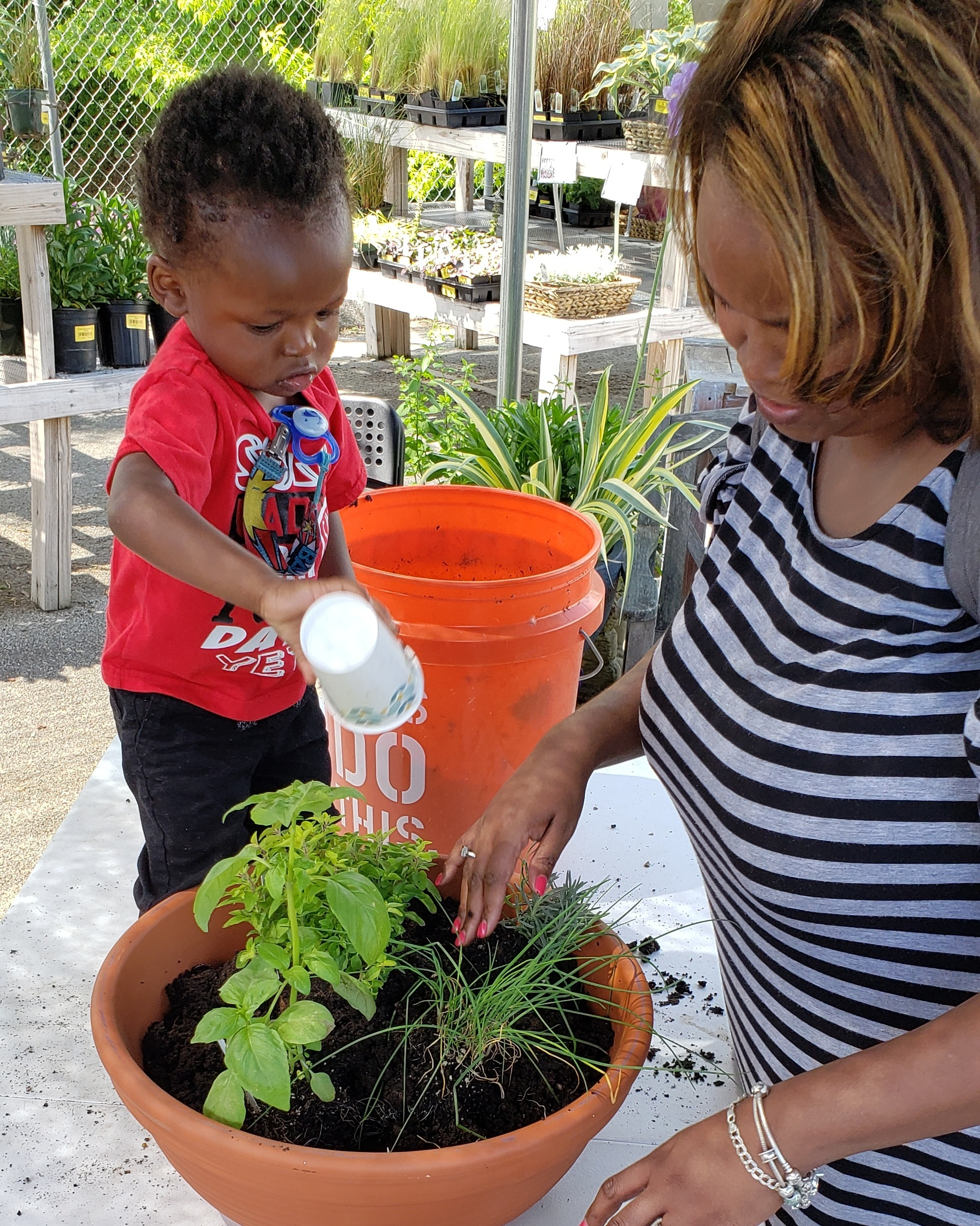 group activities, planting with kids, kids and plants