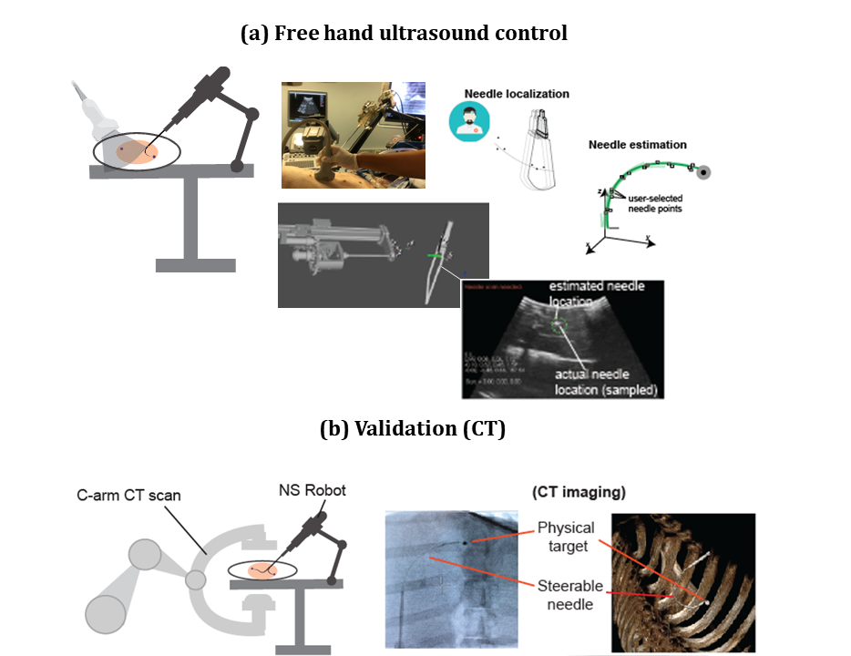 Validation tests on live animal (swine) performed at the Stanford Hospital-Radiology Department.    (a)    Freehand ultrasound guided human-in-the-loop control of the robotic steerable needle.    (b)    Validation through cone beam CT (Artis Zeego by Siemens) for 3D imaging and ground truth evaluation of the targeting error. Fake tumors are introduced and used as physical targets during pre-clinical swine tests.