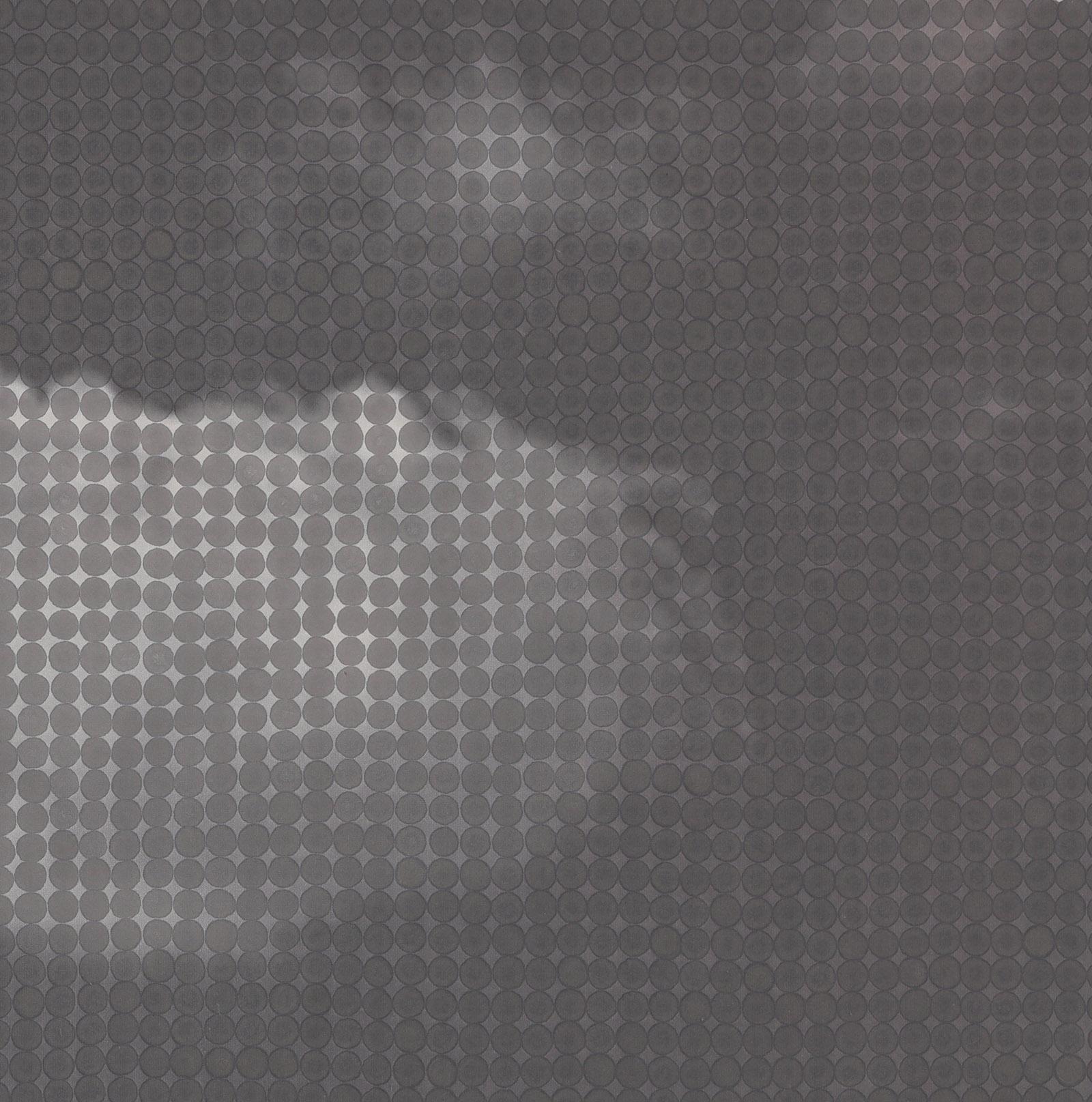 Li Zhihong, Cloud series-3, rice on paper,160x80cm,2007.jpg
