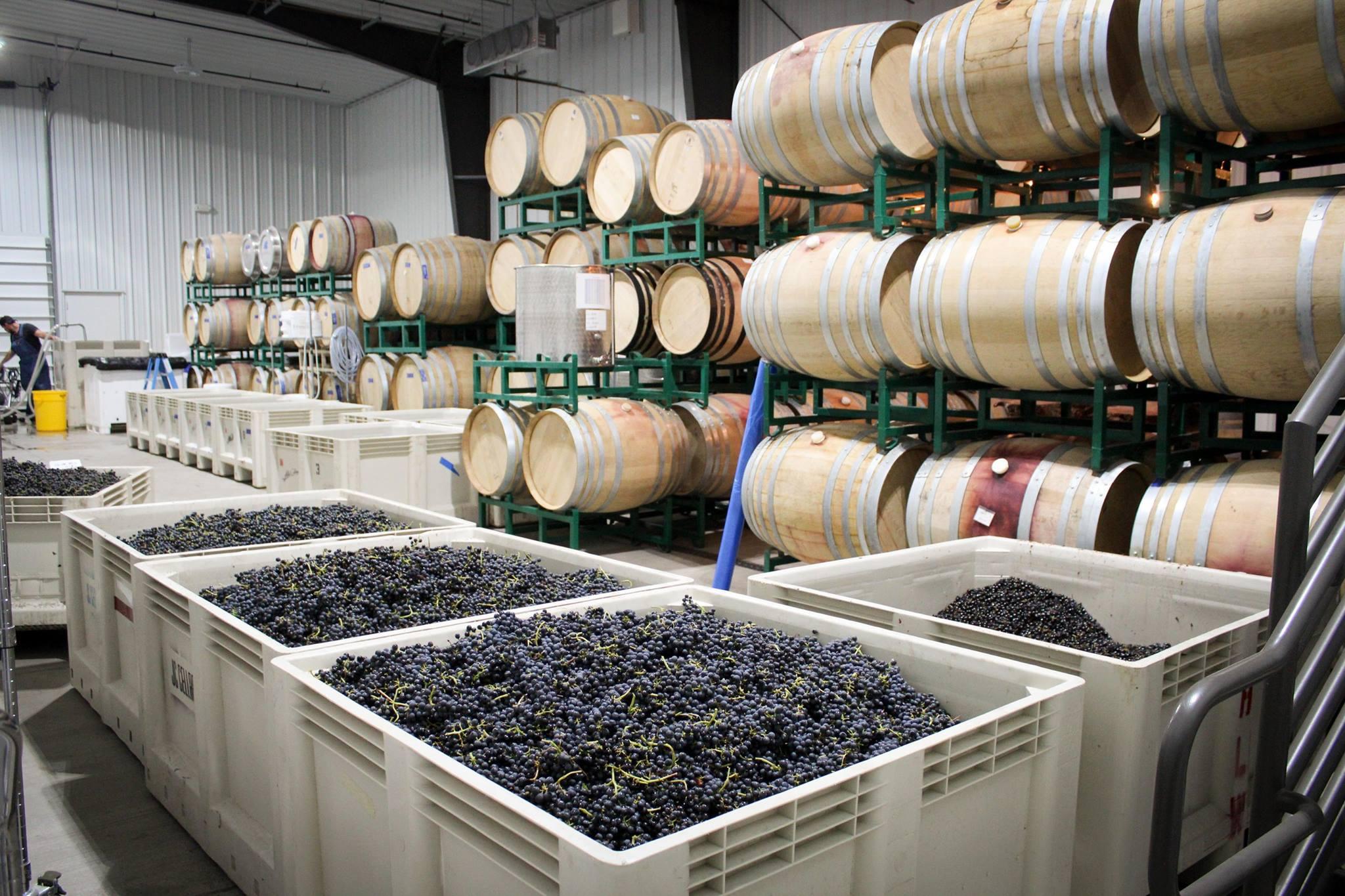 Alta-Colina-Winery-03.jpg