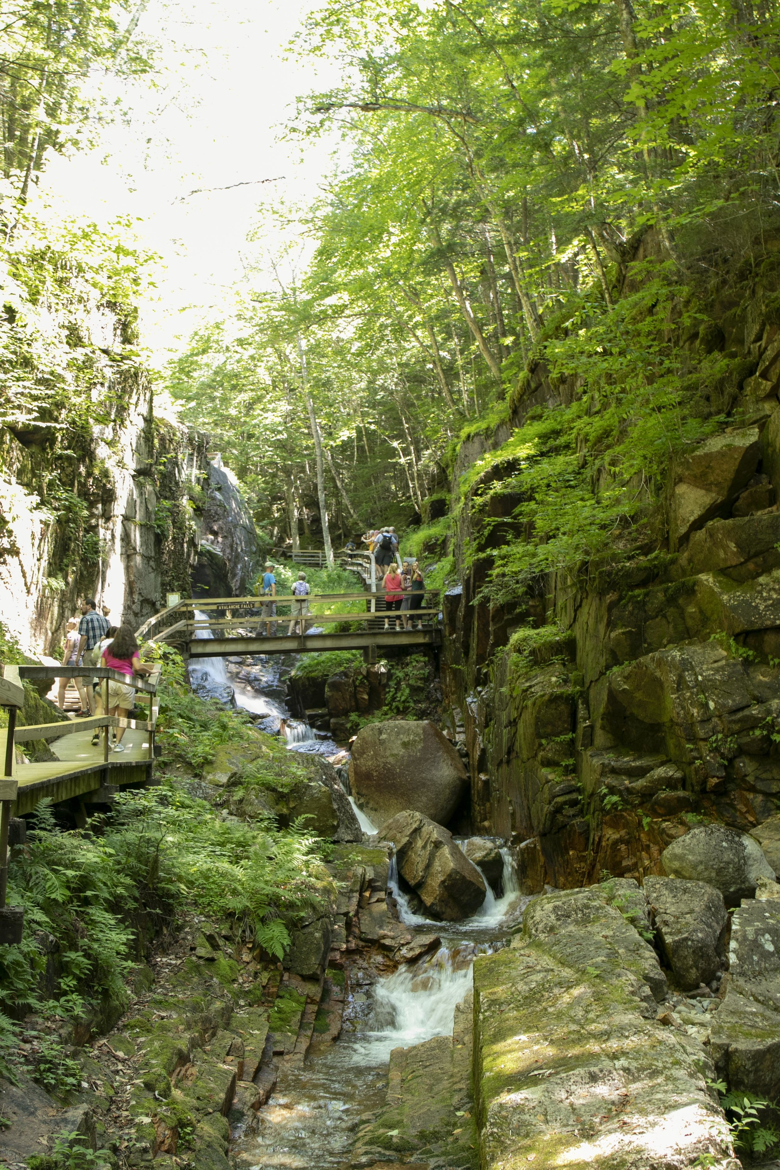 The Flume Gorge in the White Mountains in New Hampshire photographed by Vision Balm in Charleston, SC.