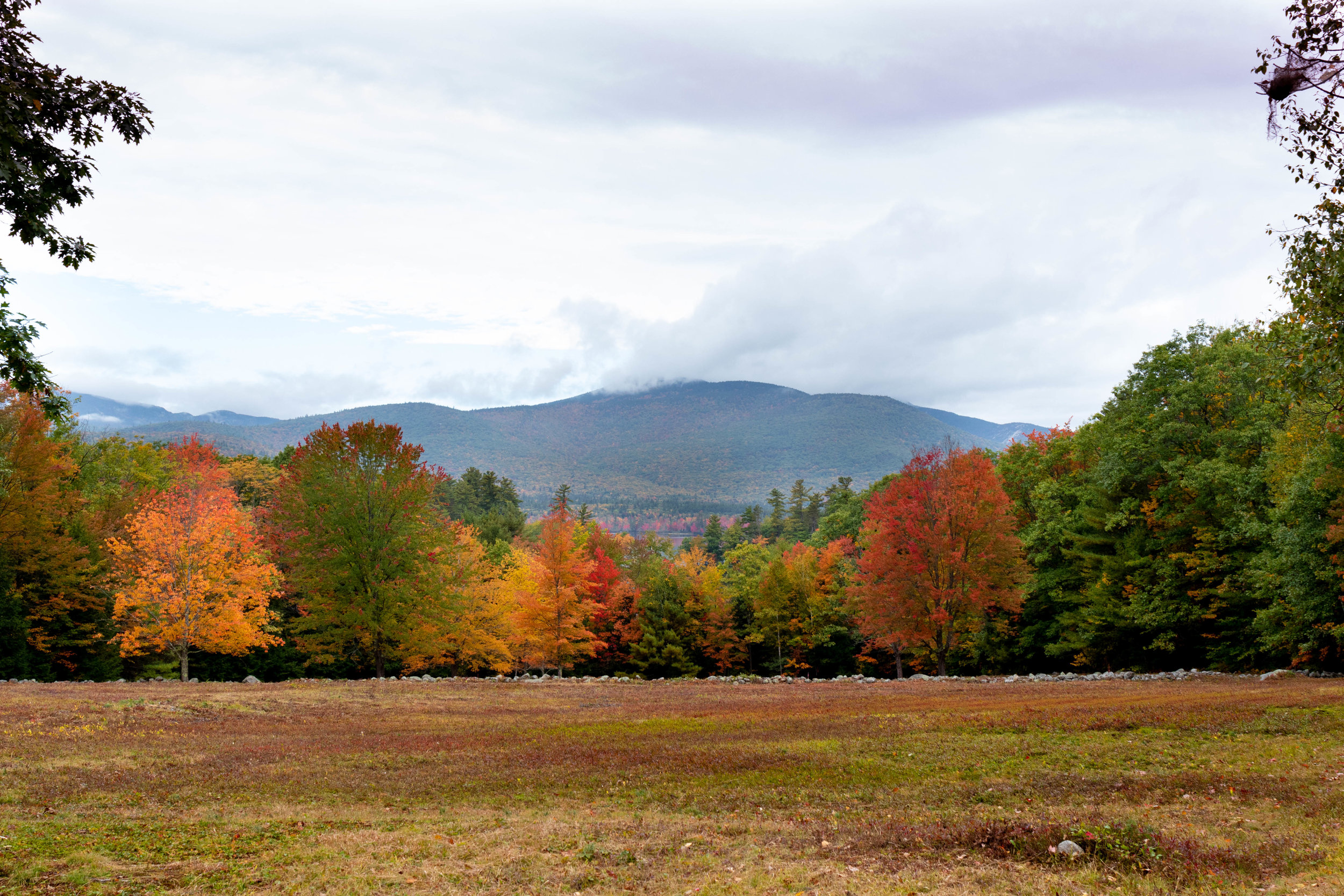 Landscape photography of the White Mountains during peak foliage season in North Conway, NH on the Kancamagus Highway photographed by Vision Balm in Charleston, SC.