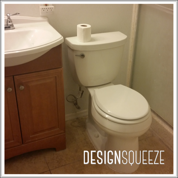 The toilet is the only thing that will return after the remodel.