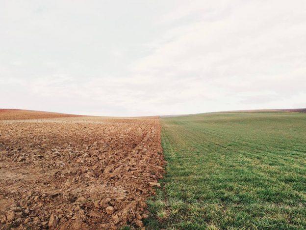 2018.05.24 bffdemocracy Land Reform in South Africa.jpg