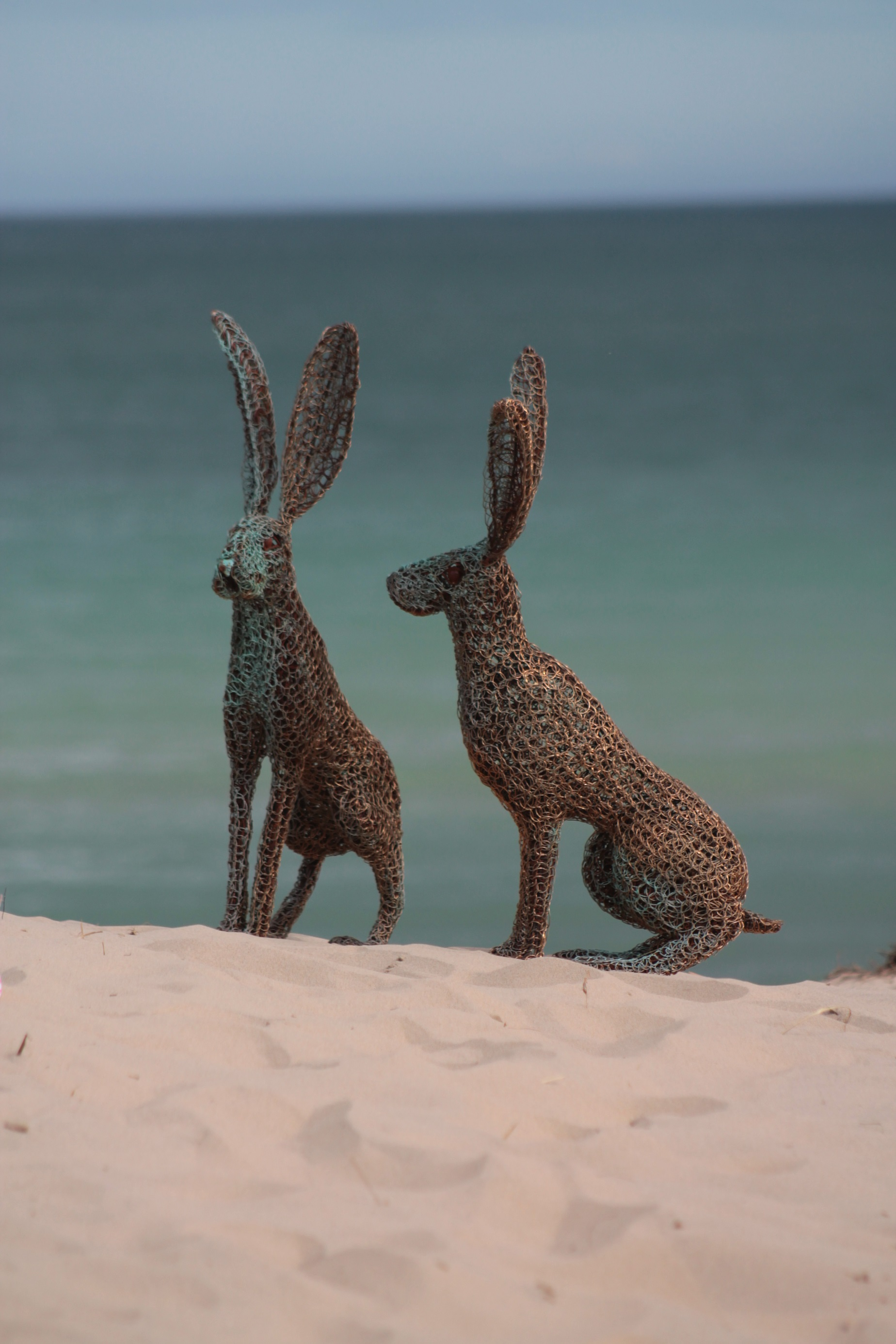 kissing hares on the sand 2.jpg