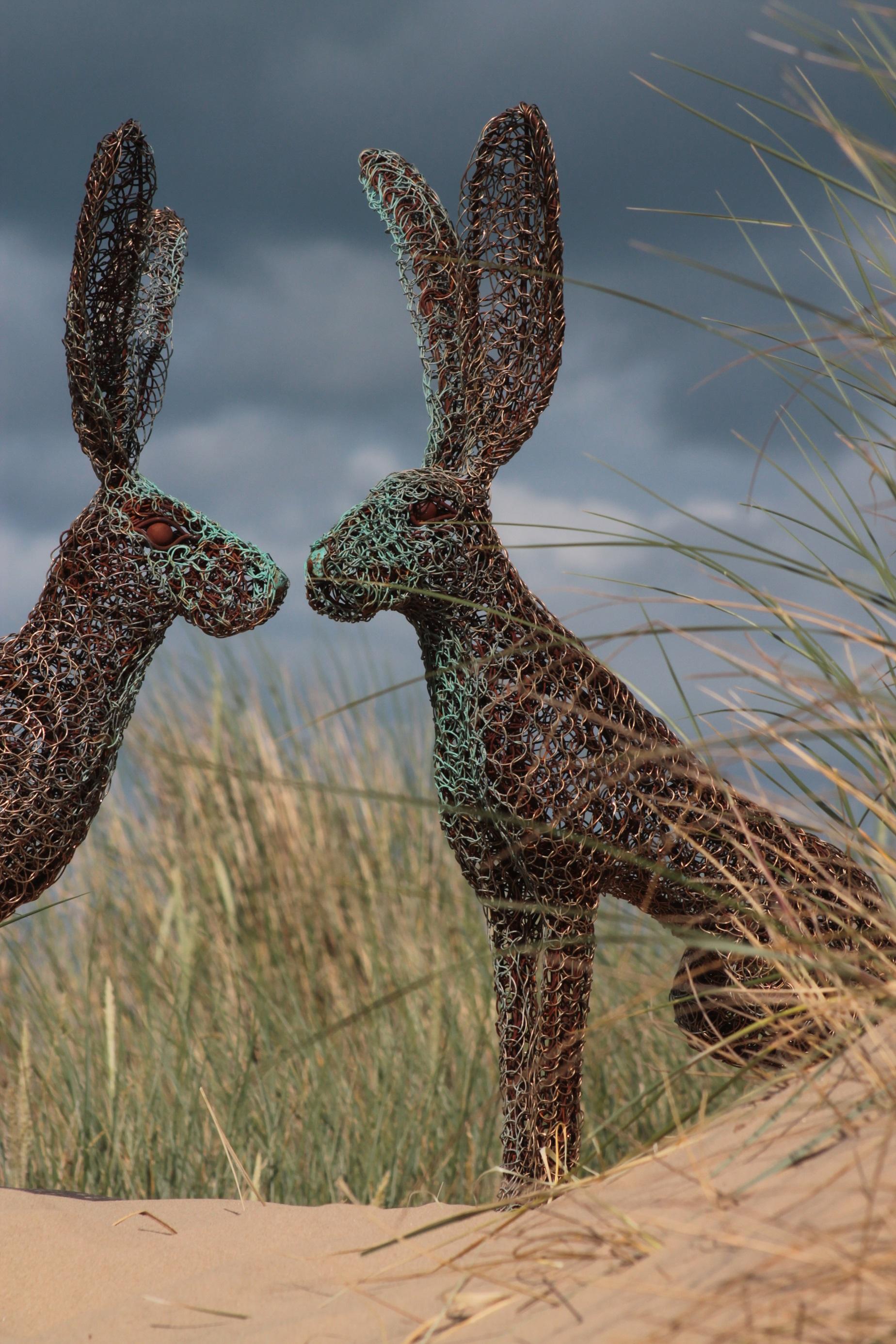 kissing hares portrait shot.jpg
