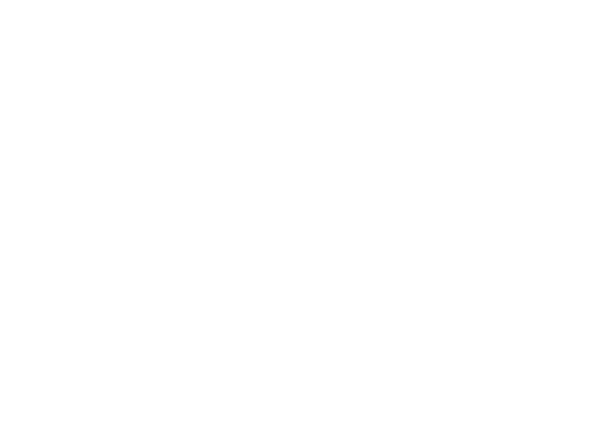 Mafer_logo copia 2.png