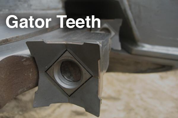 Gator Teeth.jpg