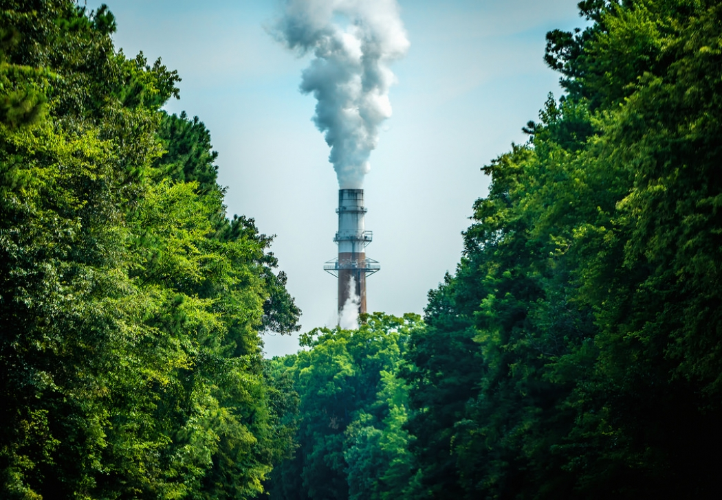 Carbon is not a synonym for carbon dioxide — The Visionable