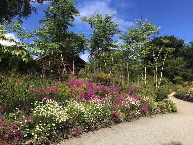 THE UNIQUENESS OF THE IRISH GARDEN by Karin Stanley  Jimi Blake's Hunting Brook Garden- an artist and plantsman's dreamscape