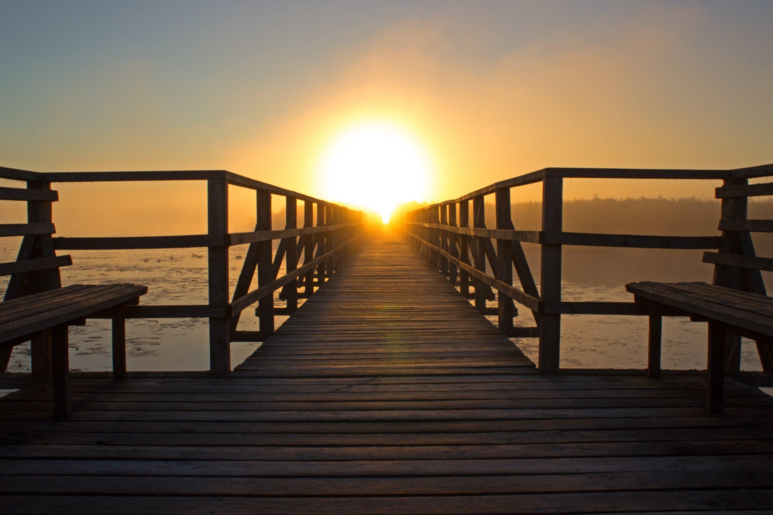 beach-bench-boardwalk-276259.jpg