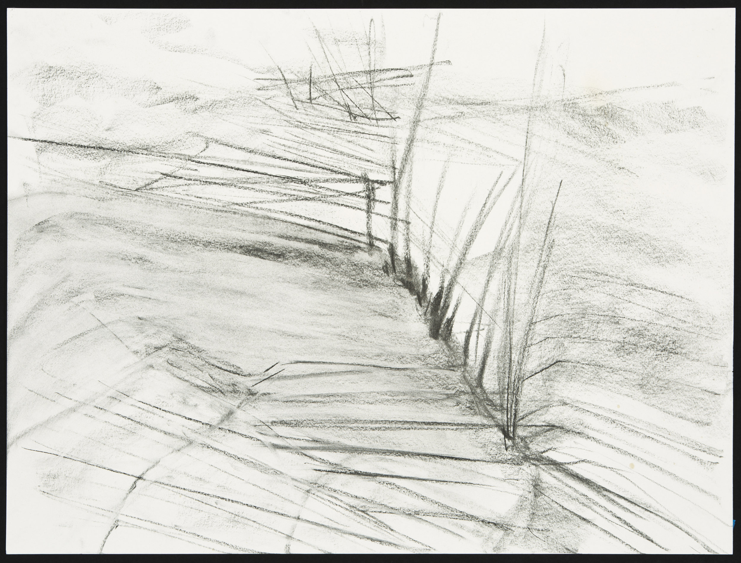 """Dune  Charcoal on Paper (18"""" x 24"""")"""