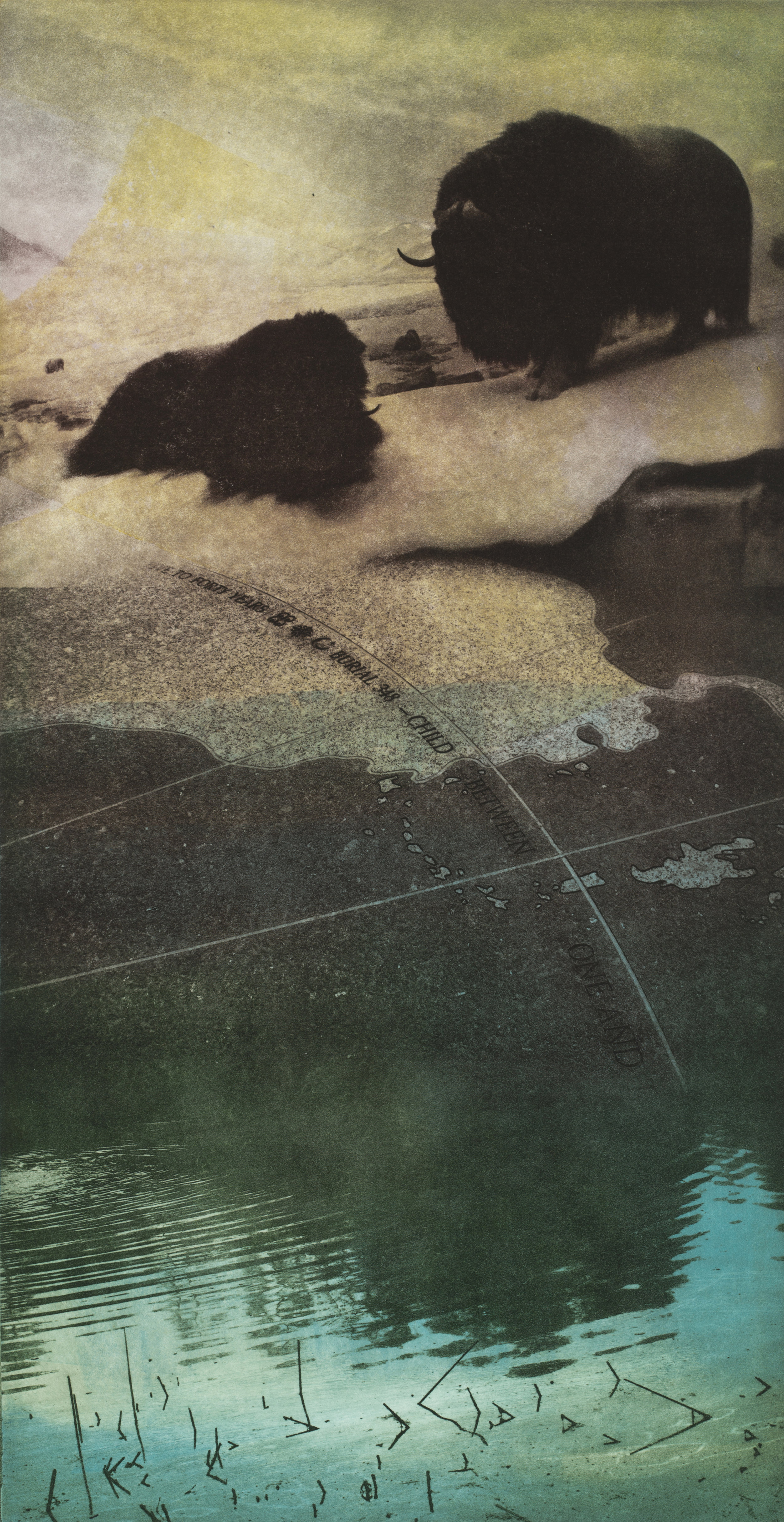 """Burial #1   Solarplate Etching (16x12"""")"""