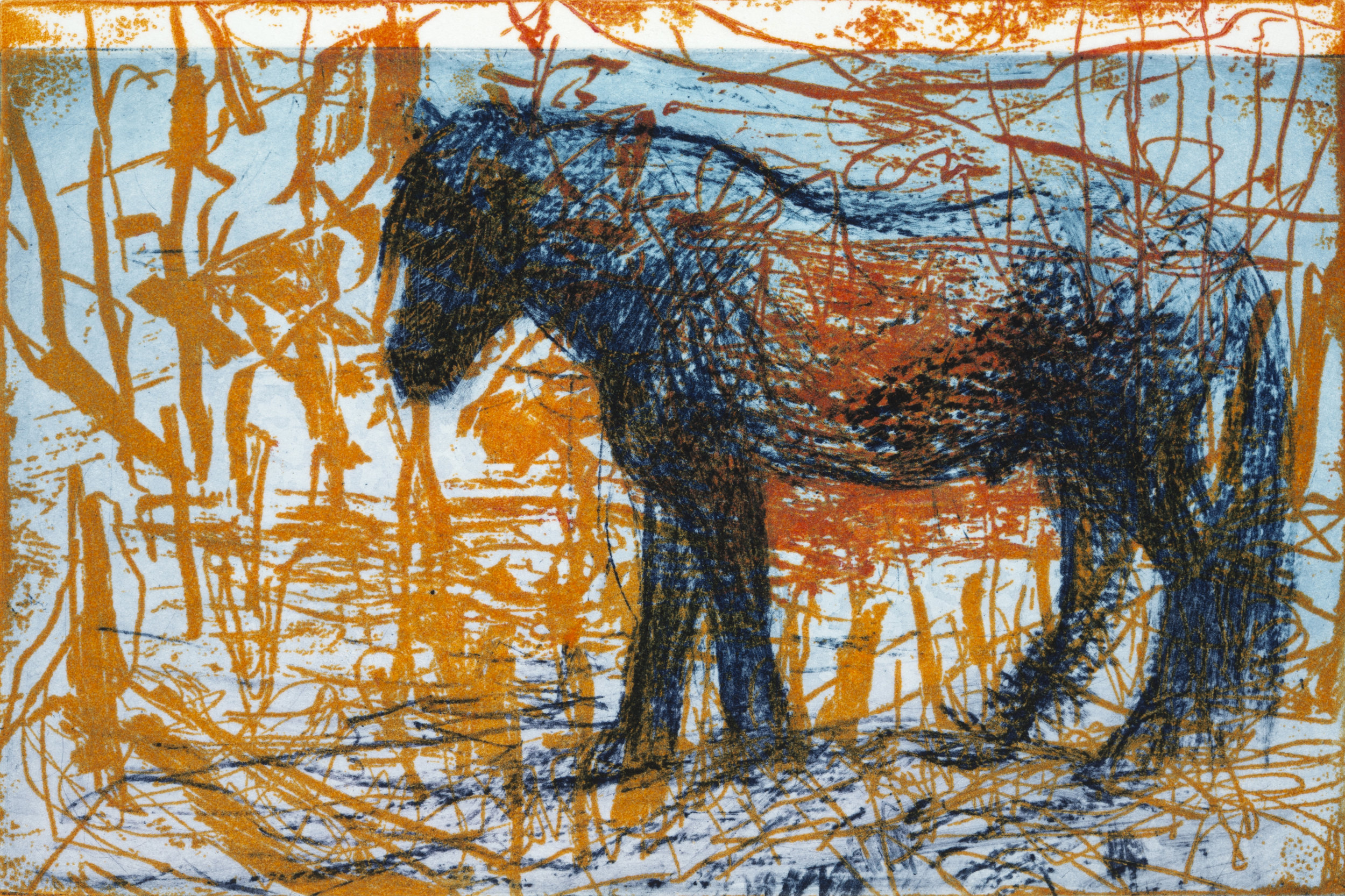 "10 Steps: Stallion   Solarplate Etching (4x6"")"