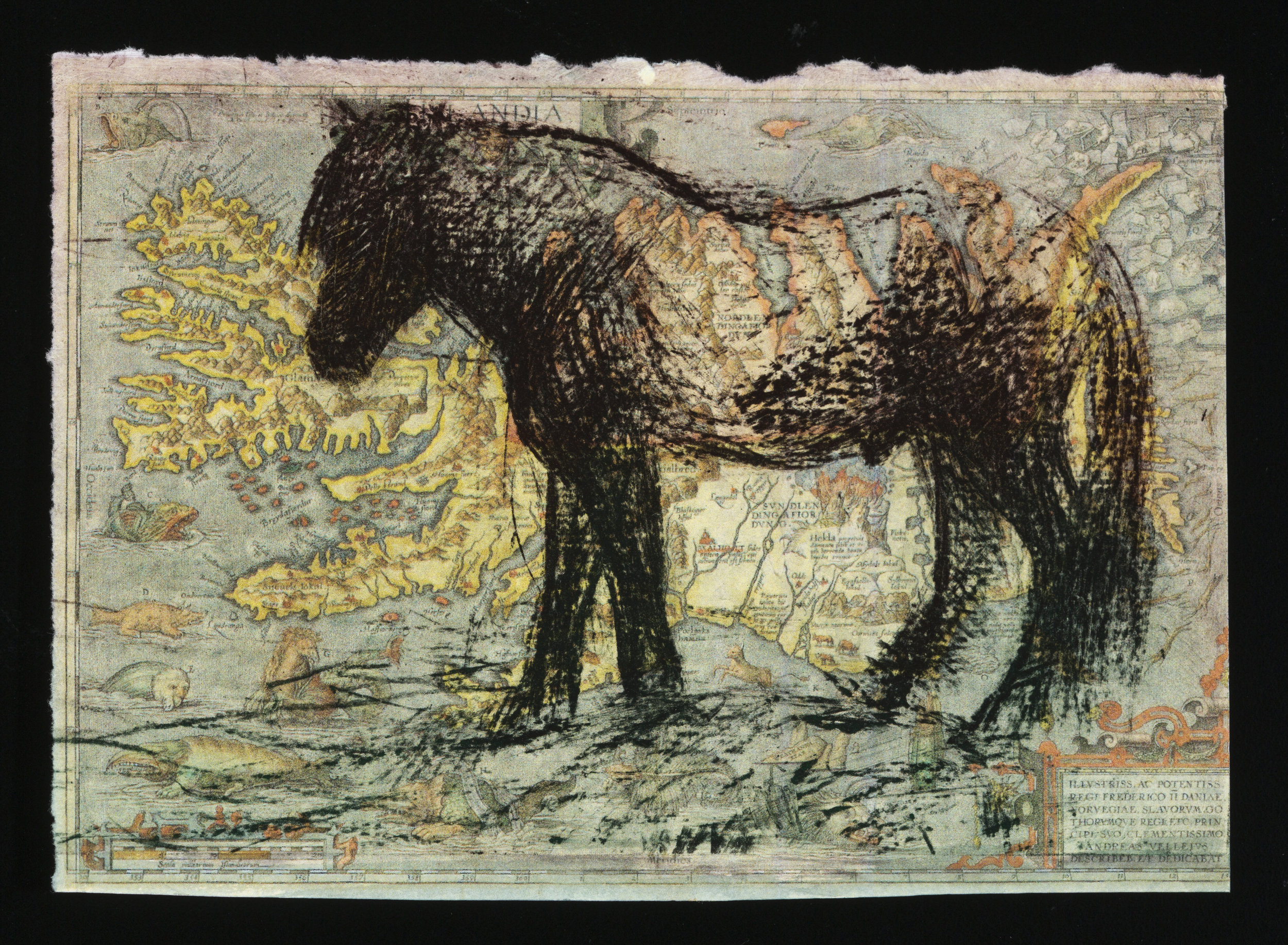 10 Steps: Stallion   Solarplate Etching on Map (4x6)