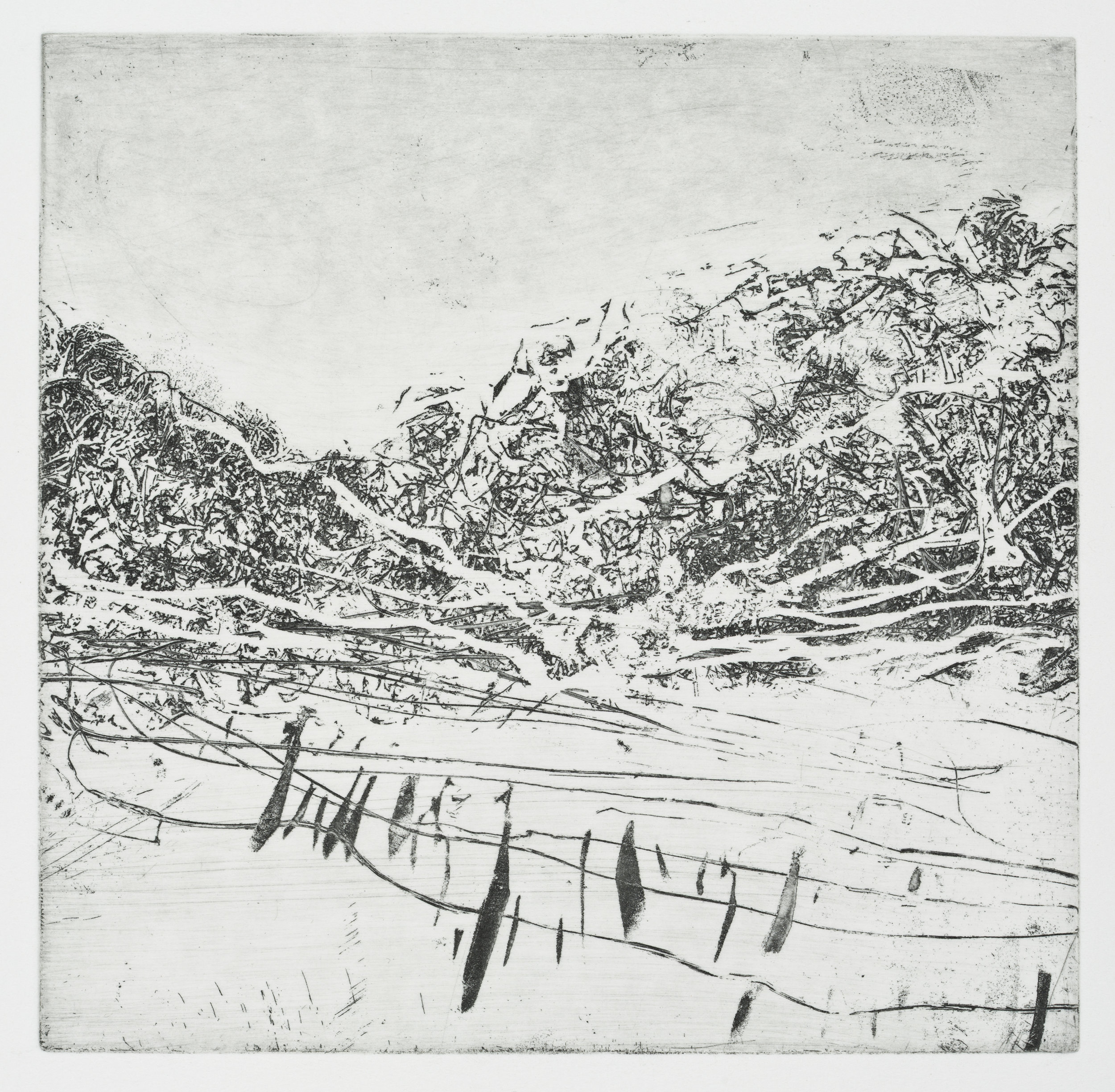 "Fence #1   Soft Ground Etching (6x6"")"