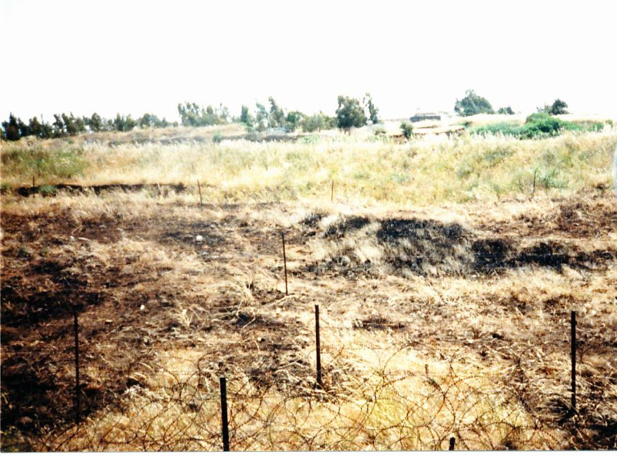 Minefield in the area of separation at the back of camp ziouani.