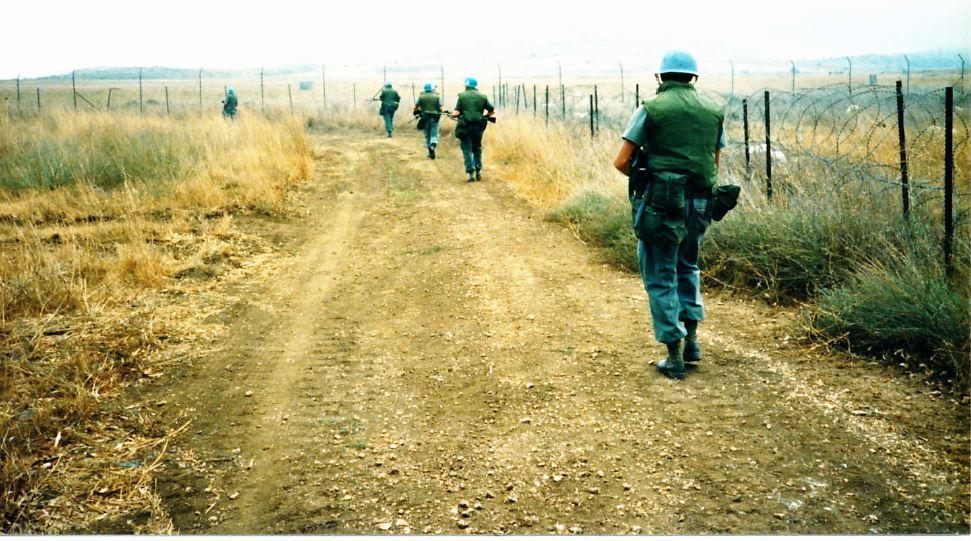 patrolling the perimeter