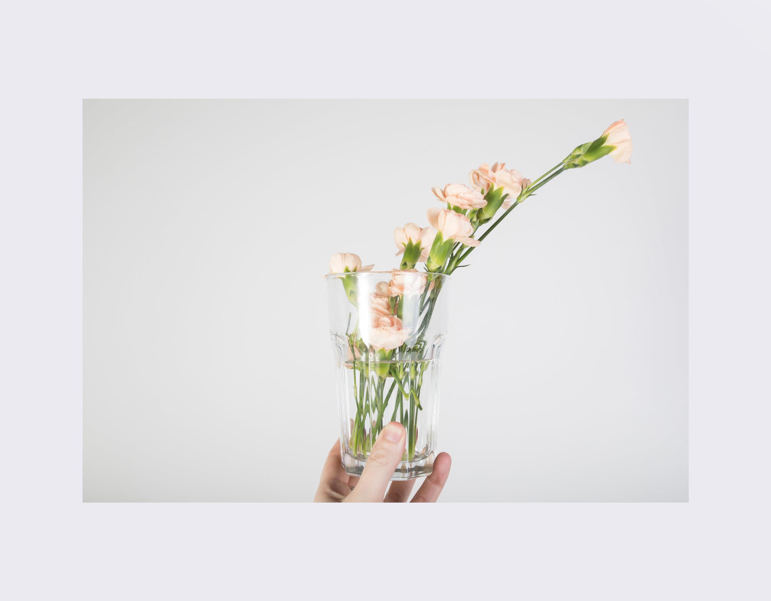 flowers4u_yawn.jpg