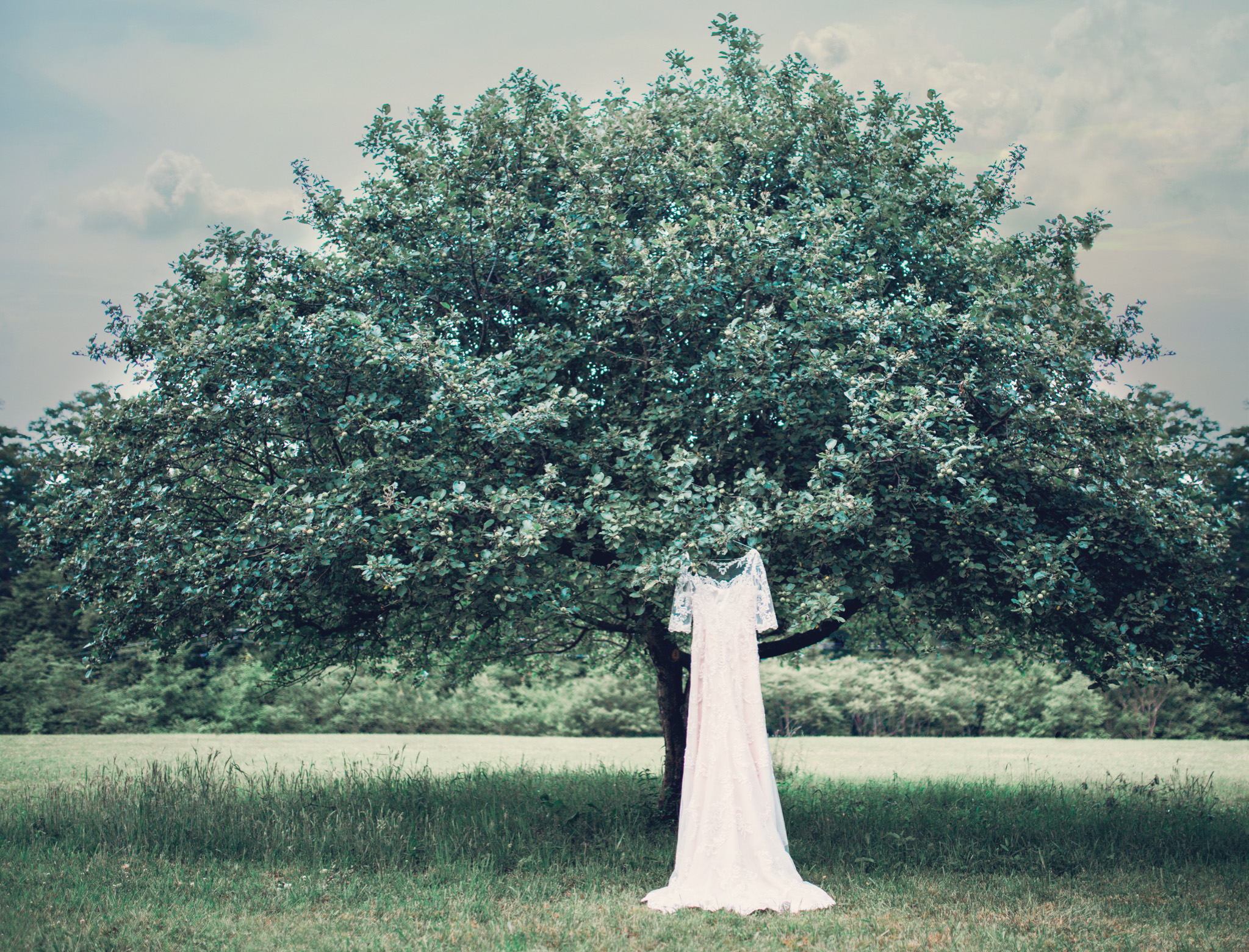 Pennsylvania vintage wedding orchard (1).jpg
