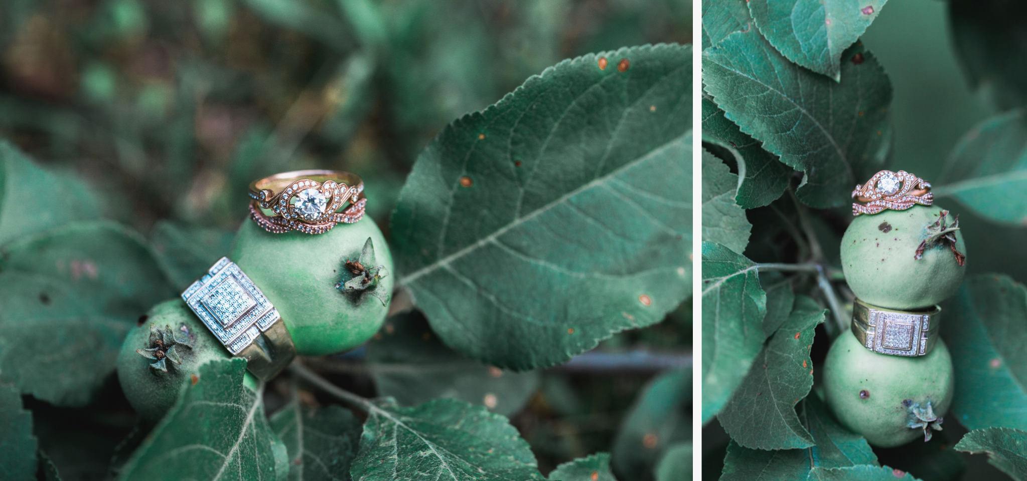Pennsylvania vintage wedding orchard (73).jpg
