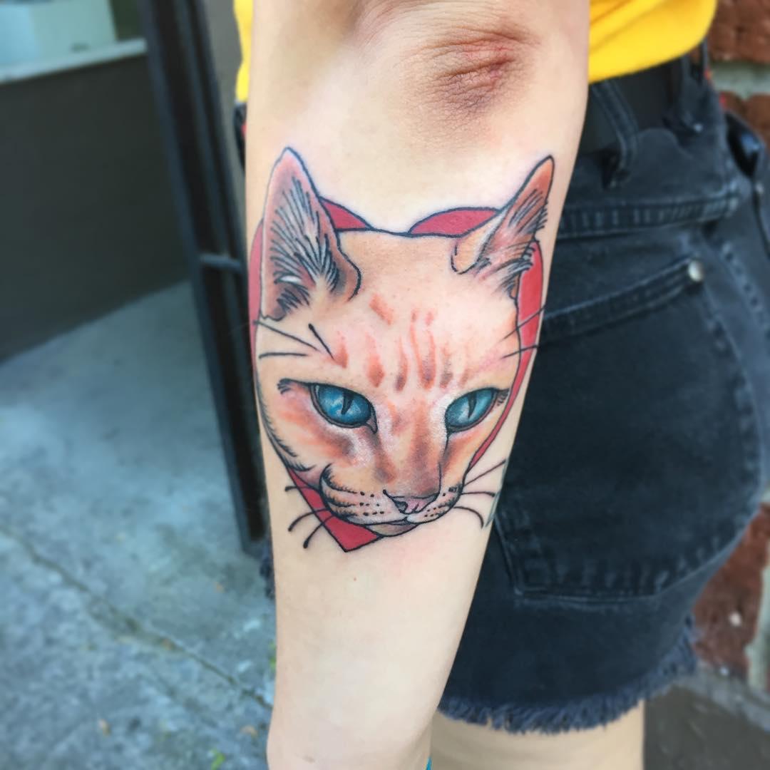 bshell_cat.jpg