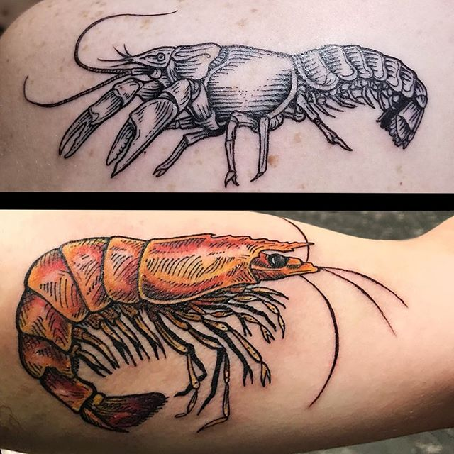 Jason and Melissa tattooed these awesome little coordinating crustaceans on a rad couple last week. ⁣ Jason Middelton @futurefires42 (top) & Melissa Daye @melissa_daye(bottom), True Love Tattoo & Art Gallery, Seattle WA. ⁣ ...⁣ #JasonMiddeltontattoos #MelissaDayetattoos #trueloveart #truelovetattoo  #tattoosofinstagram  #tattoo #ink #seattletattooartists #capitolhill  #seattleink #seattletattoo #seattletattoos #seattletattooshop #shrimptattoo #crawdadtattoo #crustaceantattoo