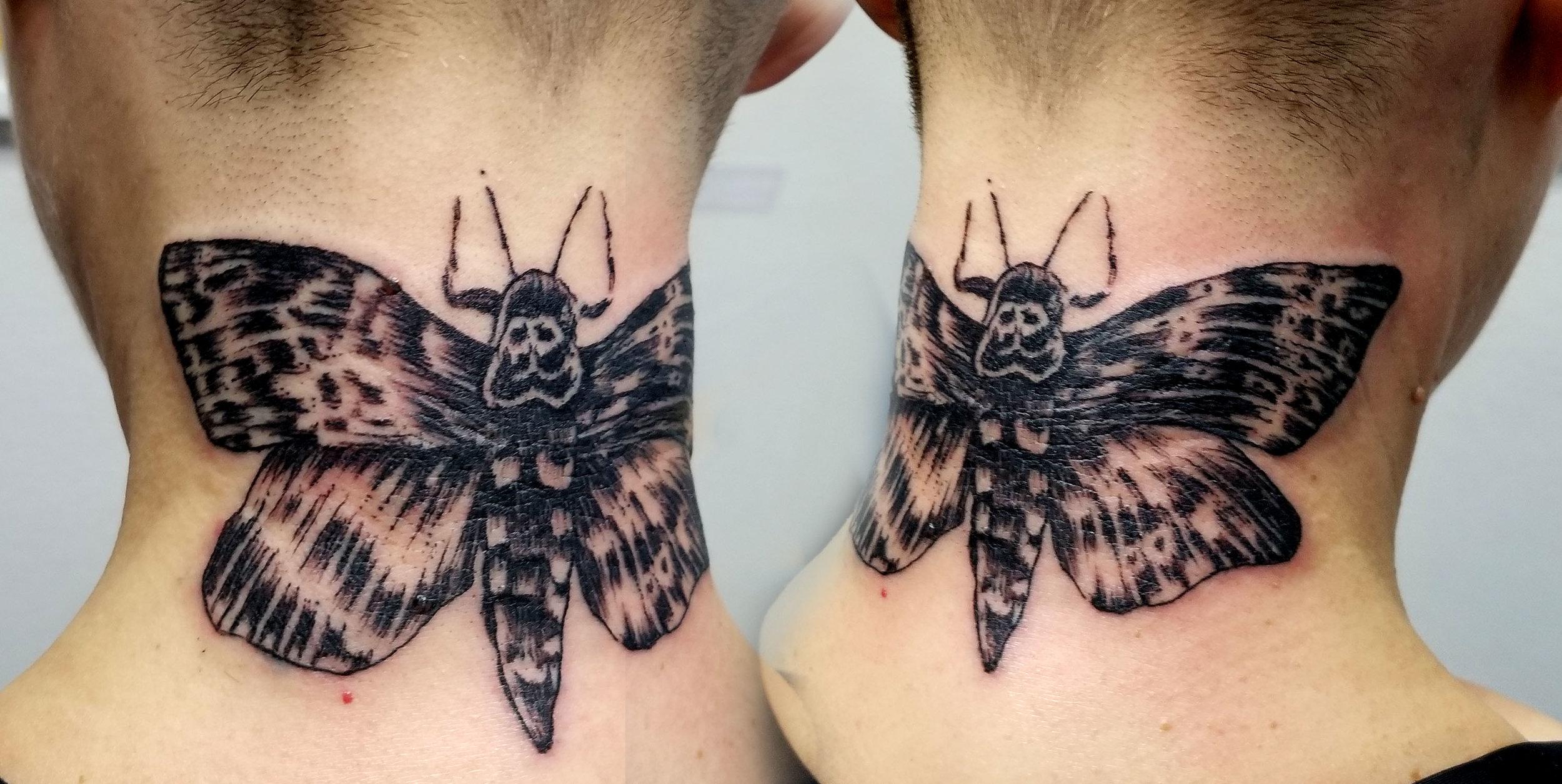 Heidi Moth.jpg